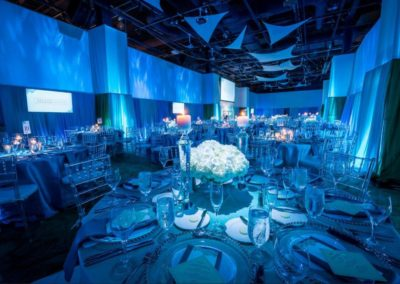 OSC Gala Pin Uplight